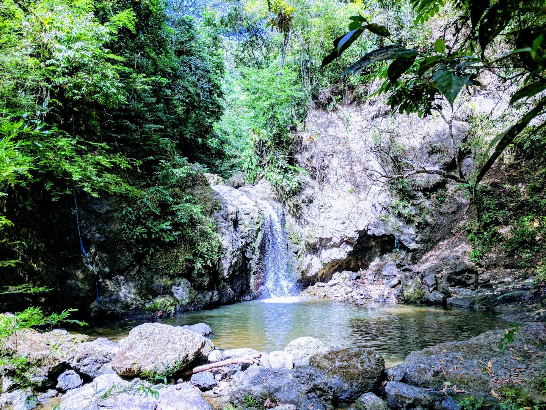 Manuel Antonio Waterfalls Hike